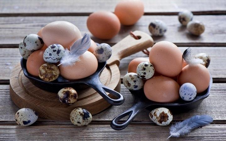 erecția ouălor de prepeliță)