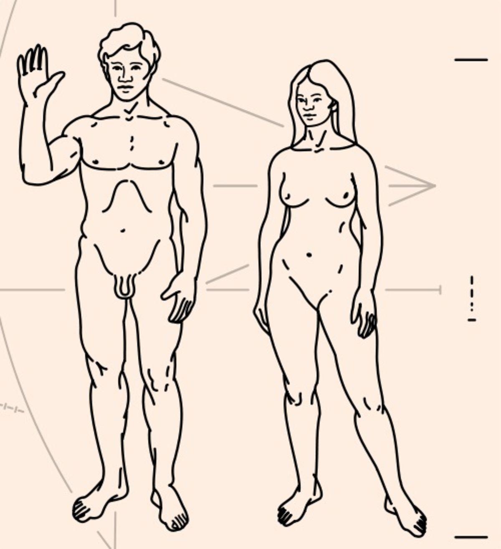 Un Mexican Are Cel Mai Mare Penis Din Lume. Acesta Măsoară 48 De Centimetri | Libertatea