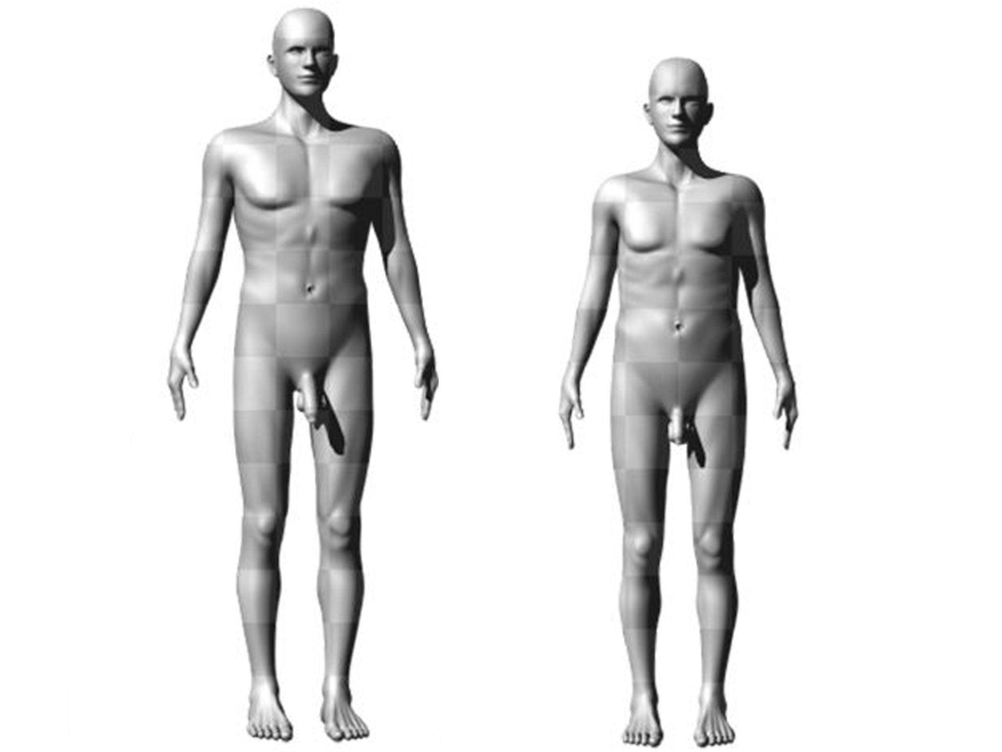 dimensiunea penisului de întâlnit