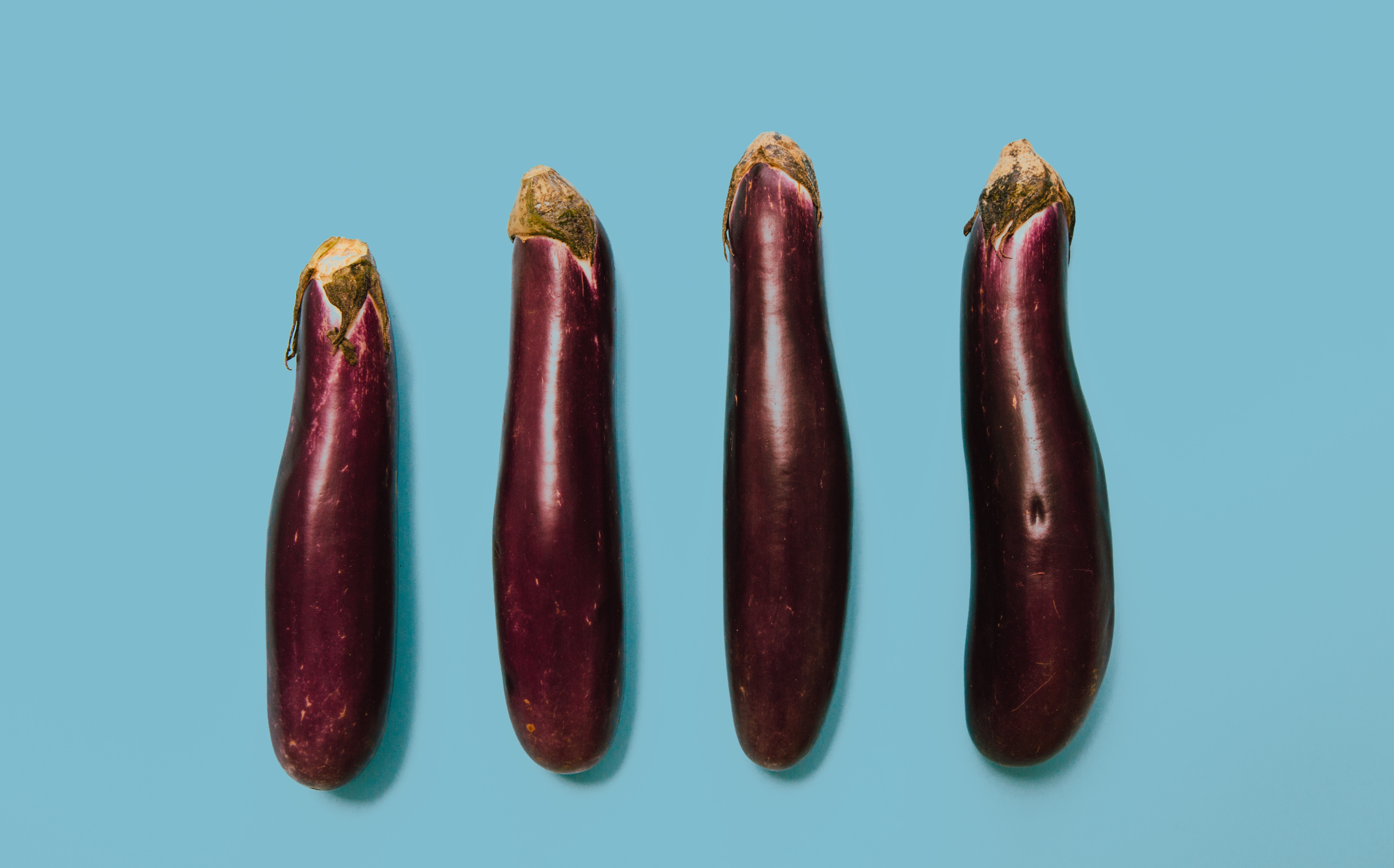 penis în timpul erecției)