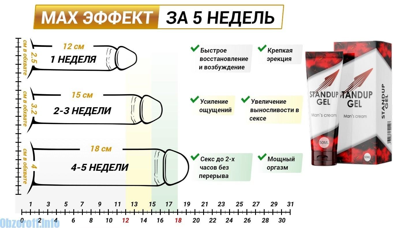 ce afectează grosimea penisului)