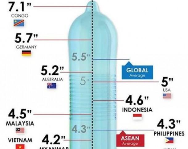 lungimea și dimensiunea penisurilor