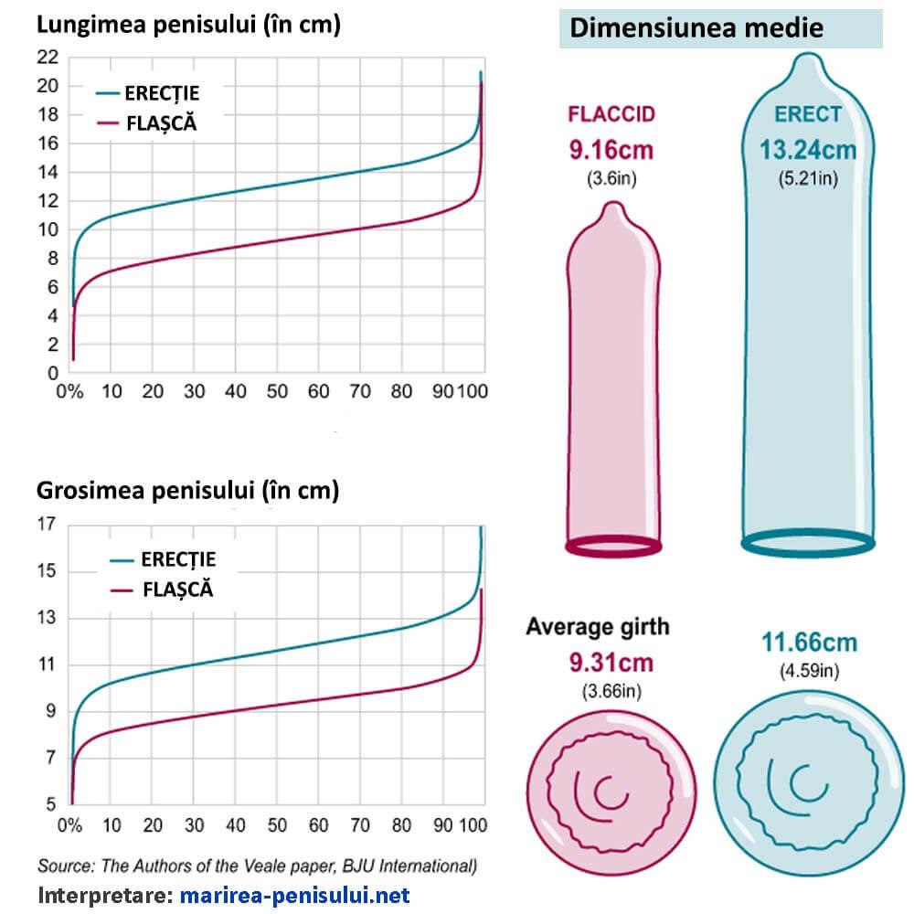 cum să aflați lungimea penisului)