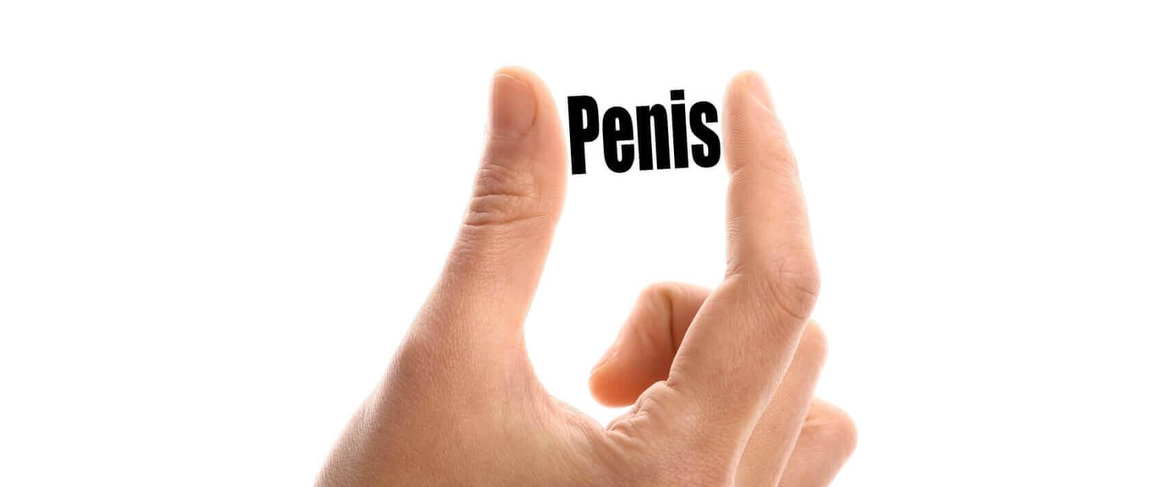 ce trebuie să mănânci pentru a crește un penis