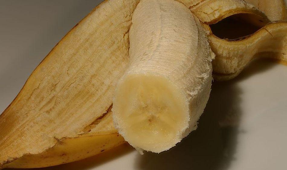 penis și circumferință