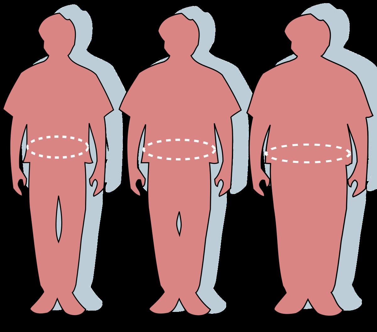 supraponderalitatea afectează dimensiunea penisului)