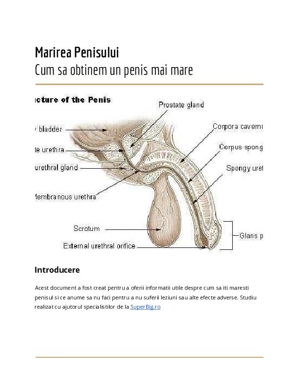 cum se mărește manual penisul