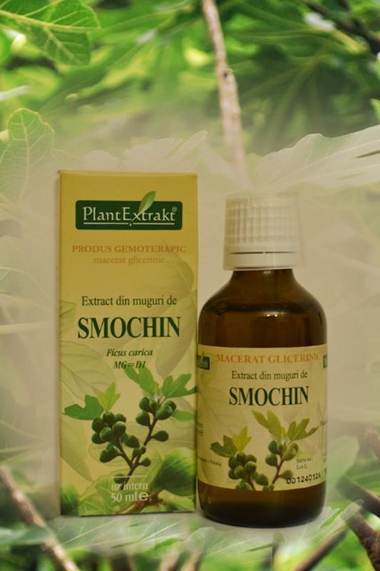 Erekton Fast 8 comprimate - Darmaplant