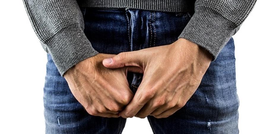 în timpul unei erecții, testiculul se ridică