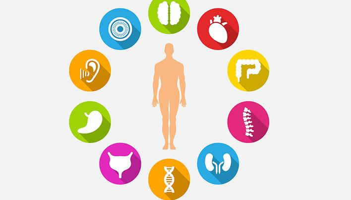 terapia hormonală a penisului este posibil să se trateze penisul cu peroxid